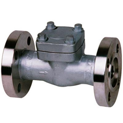 API 602 Forged Swing/Lift Flanged Check Valve, 1/2-2 Inch