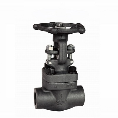 Forged Steel Bolted Bonnet Gate Valve, Class 150/300/600/800