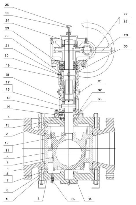 Structure of Reduced Bore Type Orbit Plug Valve with Gear