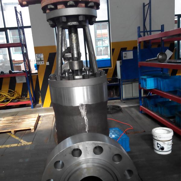 High pressure globe valve