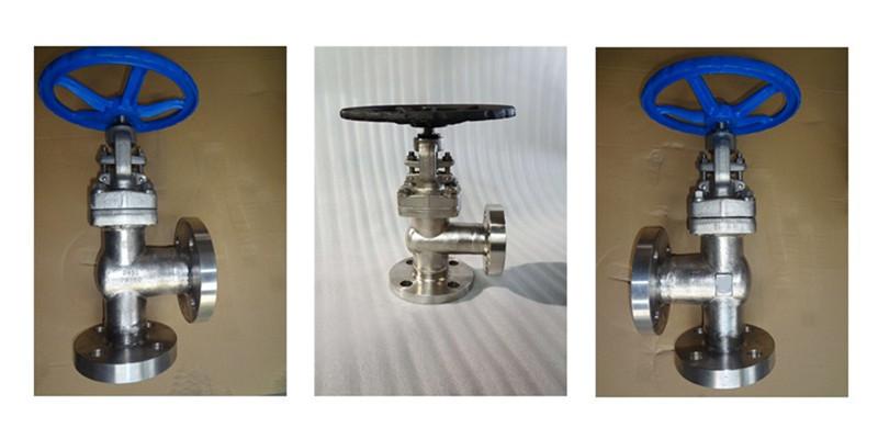 angle type globe valve