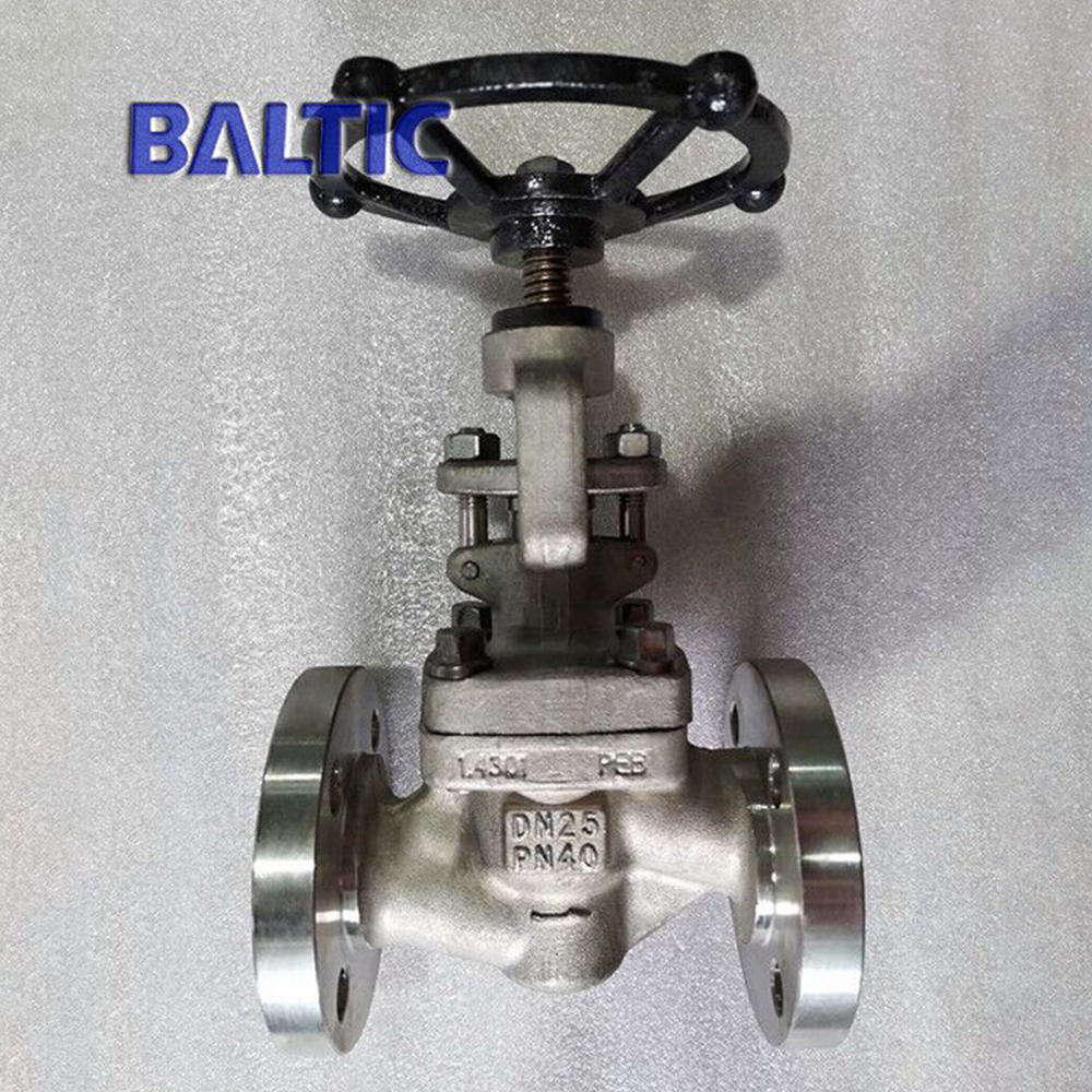 DIN Small Size Globe Valve in Forging Materials