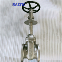 Cryogenic Valves for a Low Temperature of -196℃