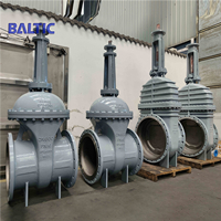 Gate Valves with Big Sizes