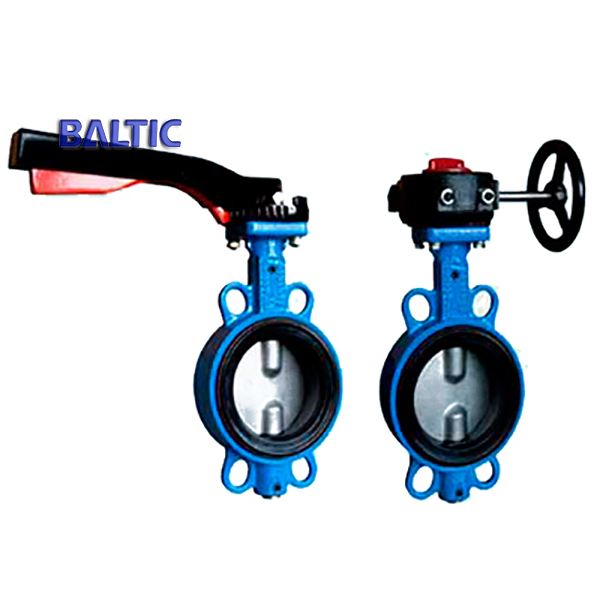 Cast Iron Butterfly Valve with Lever, 6 Inch, Class 125, Wafer