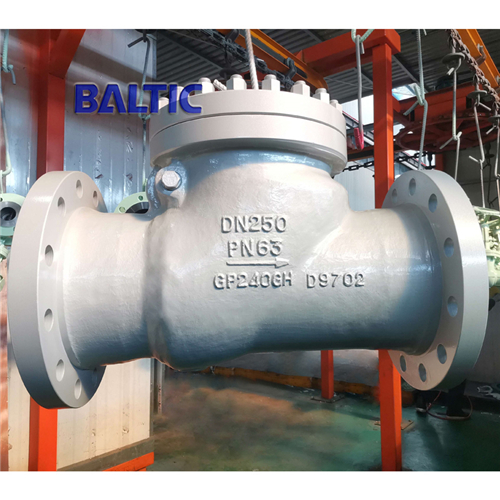 BS 1868 GP240GH Swing Check Valve, DN250, PN63, Bolted Bonnet