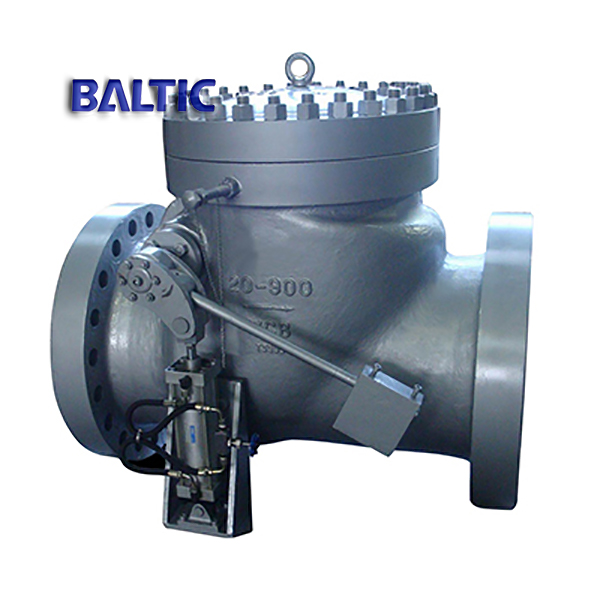 Swing Check Valve, Lever Counter Weight Hydraulic Damping Cylinder