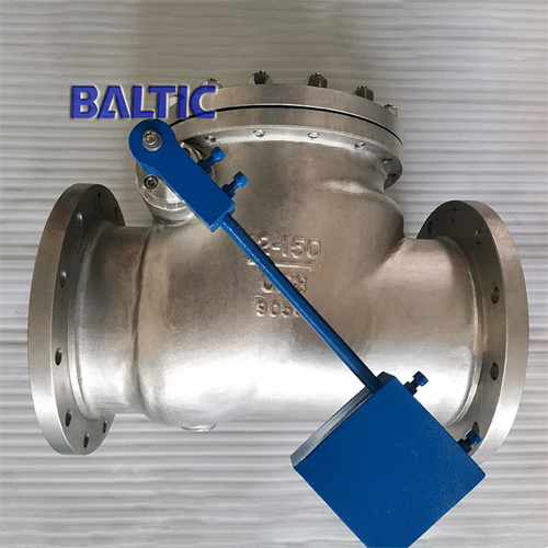 API 6D Stainless Steel Cryogenic Swing Check Valve, 12 Inch