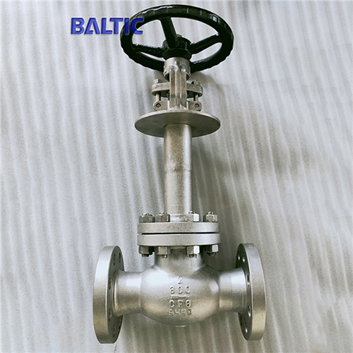 DIN 3356 Cryogenic Globe Valve, ASTM A351 CF8, 2IN, CL300