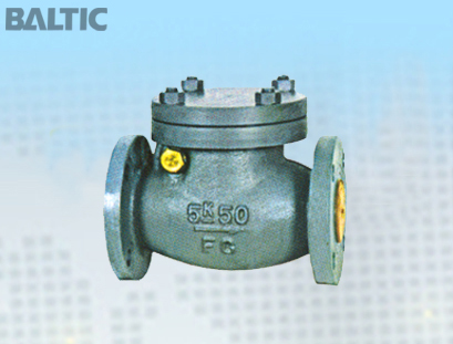 JIS F7372 5K 50A Cast Iron Marine Swing Check Valve