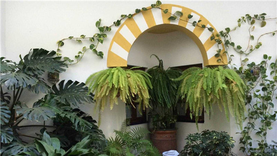 artificial plant for hotel decoration
