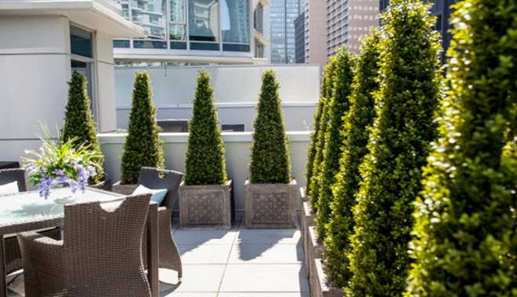 Artificial Plants for Outdoor Landscaping