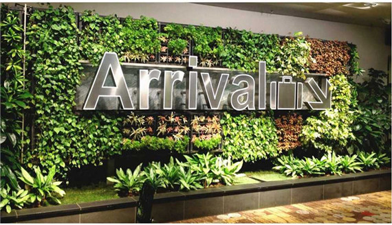 Shopping mall and store decoration
