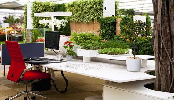 Faux Plant for Office Decoration