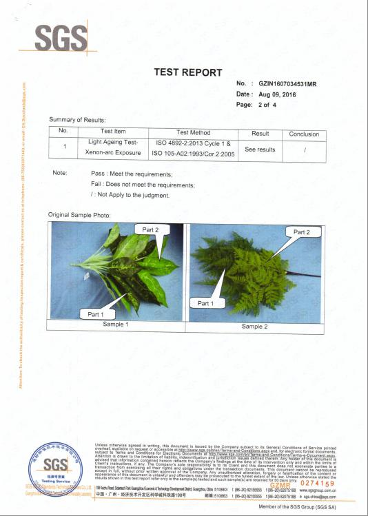 Test Report of Artificial Plants 2