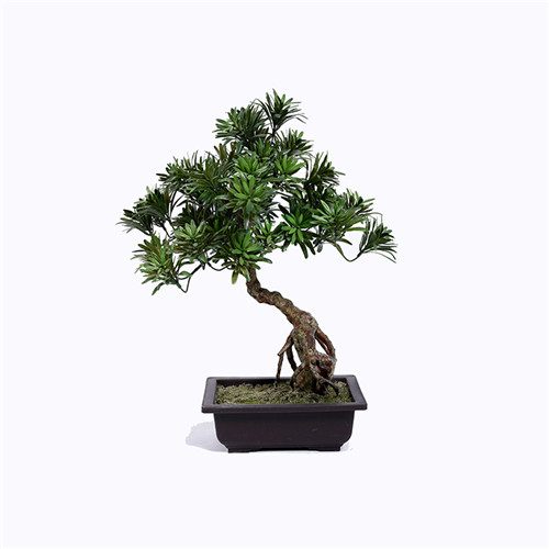 Artificial Buddhist Pine Bonsai, Home Decoration