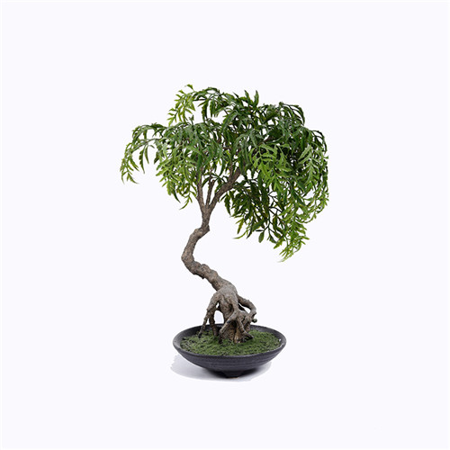 Artificial Ming Aralia Bonsai