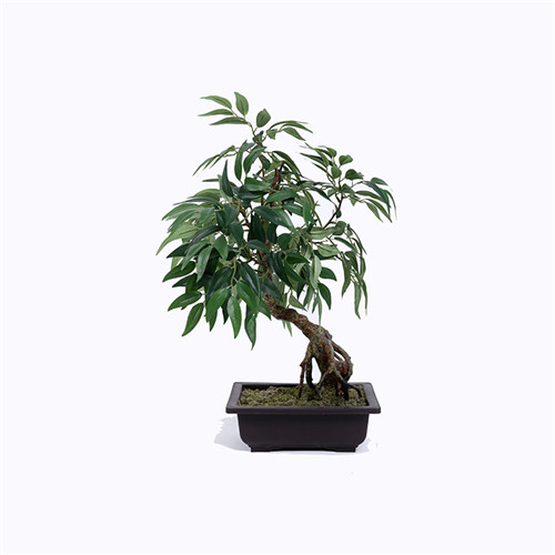 Faux Tree Bonsai, Black Plastic Base