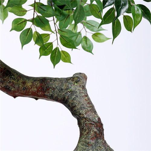 Plastic Ficus Plant, 100CM, Curved Trunk