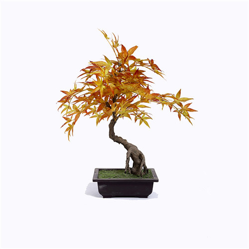 Silk Potted Maple Tree