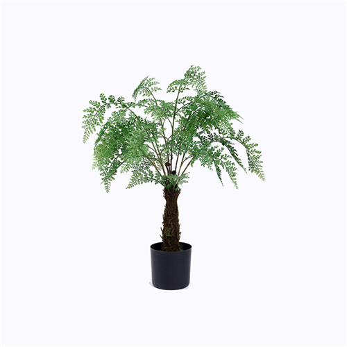 Artificial Ferns Bonsai For Indoors