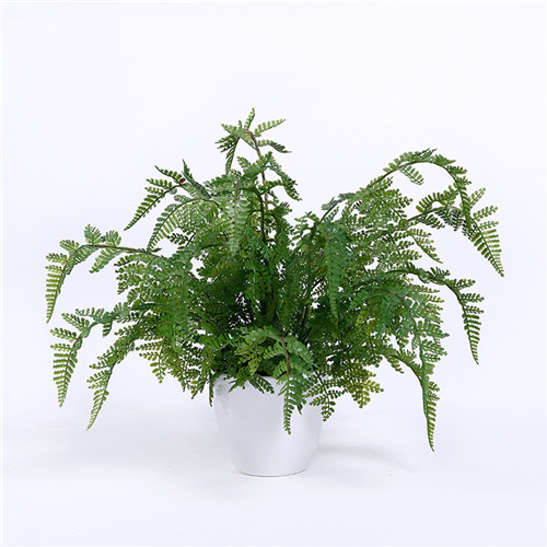Artificial Fern Plants
