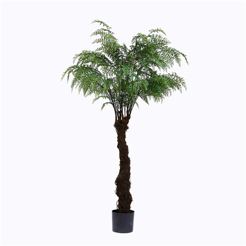 Artificial Fern Tree, Made of Silk, Plastic, Plastic Base