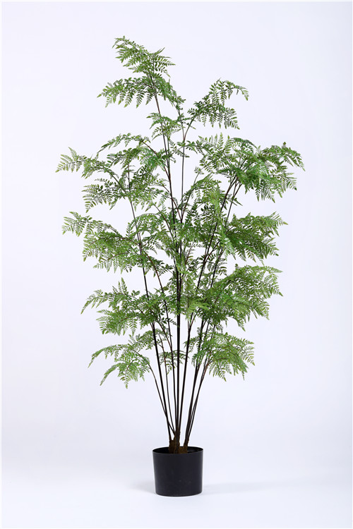 Artificial Lady Fern, Artificial Lady Fern Plant, Custom Size