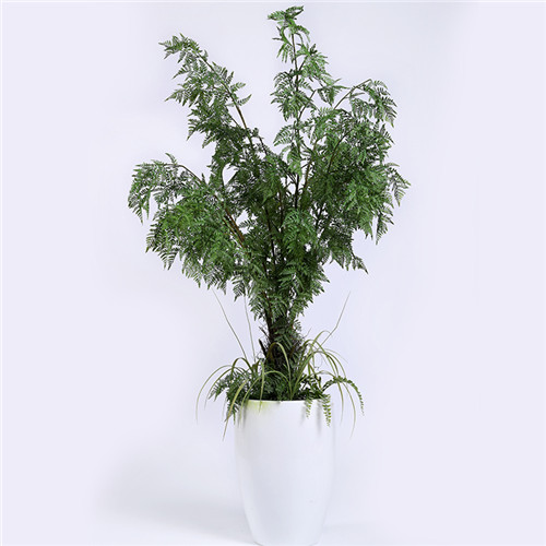 Artificial Potted Fern