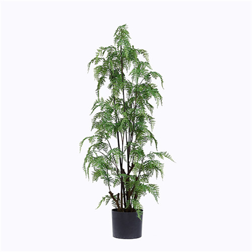 Artificial Potted Ferns, Plastic or Silk Material, 180CM