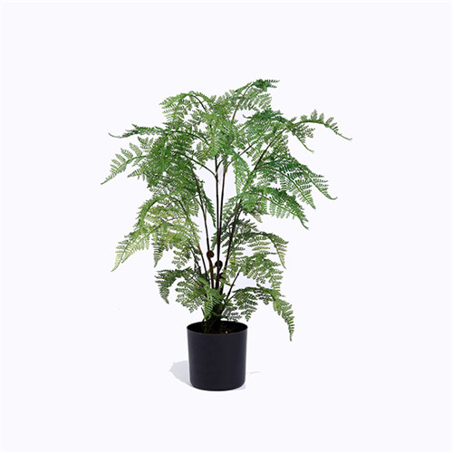 Faux Fern, Made of Plastic or Silk Material, Plastic Base