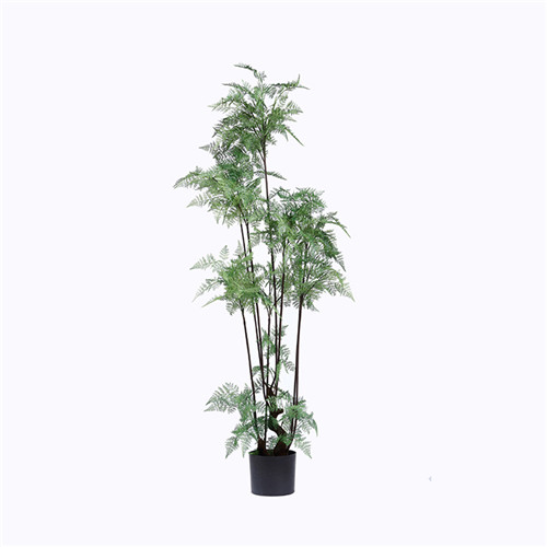 Plastic Ferns Bonsai For Decoration, 150CM, In Pot