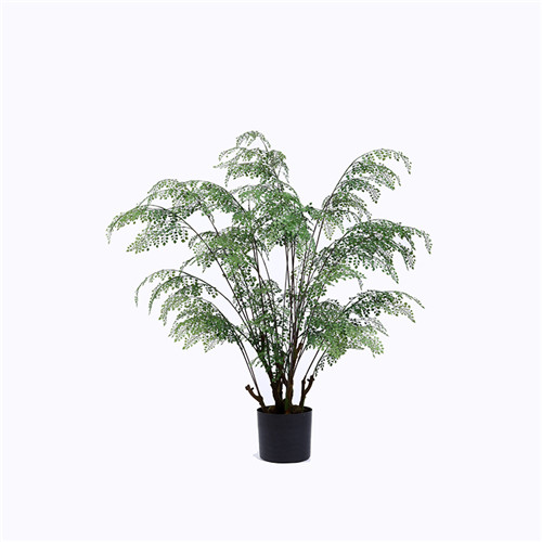 Potted Silk Ferns, 100CM, Silk or Other Materials, Plastic Base
