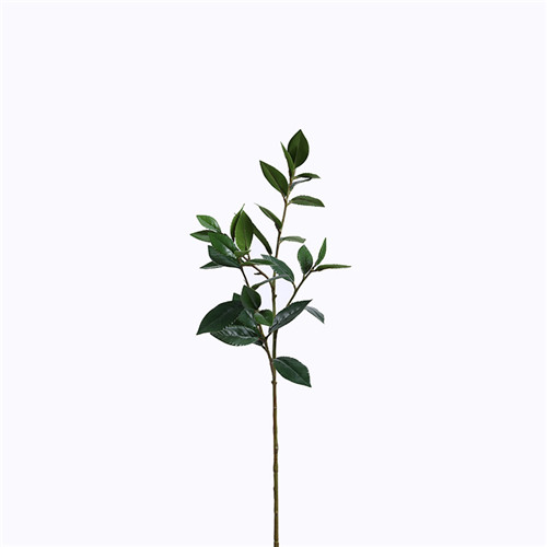 Artificial Sweet Bay, Single Branch, 105CM