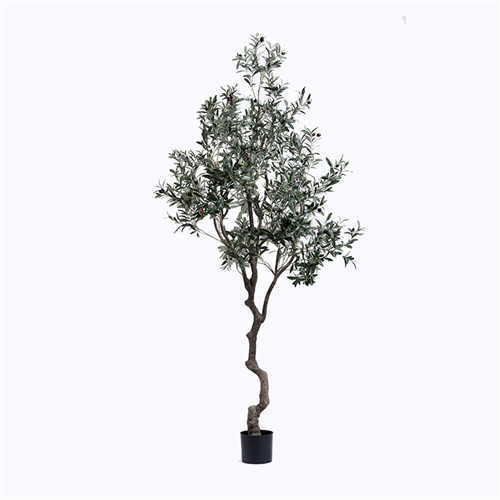 Artificial Giant Olive Tree