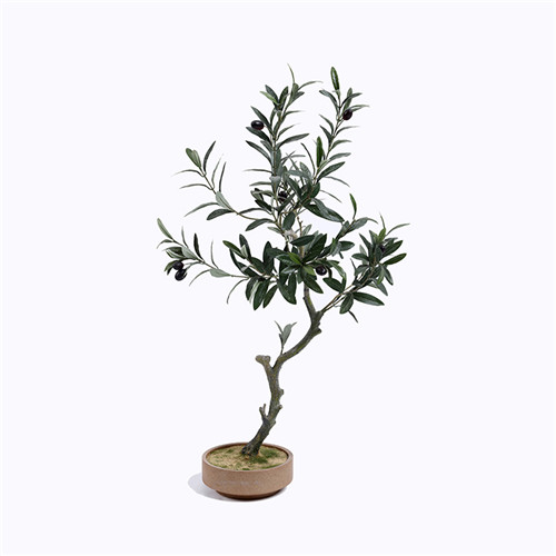 Artificial Olive Bonsai Tree