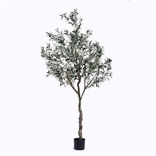 Plastic Olive Tree