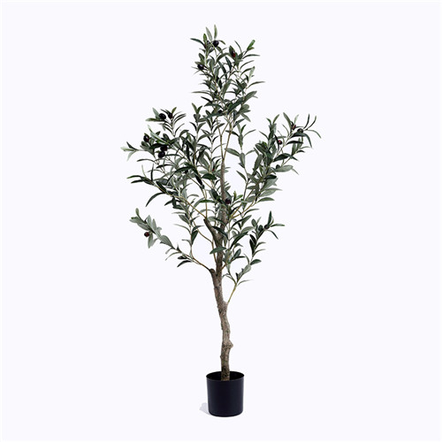 Brand new Silk Olive Tree, Faux Olive Tree Manufacturer China - Sharetrade  FK15