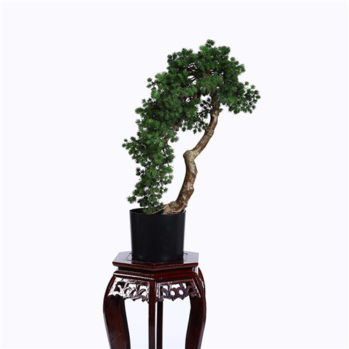 Artificial Buddhist Pine Tree Bonsai, Plastic Base, 80CM