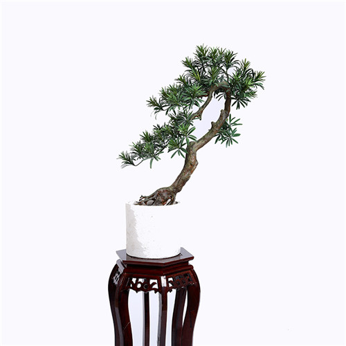 Artificial Pine Tree Bonsai For Indoors