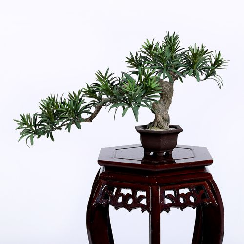 Faux Buddhist Pine Tree