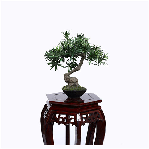 Faux Curved Buddhist Pine Tree