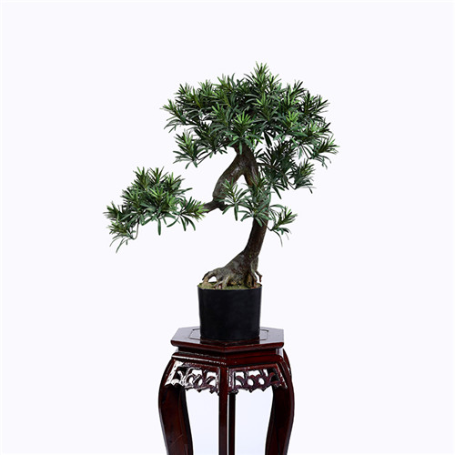 Faux Pine Tree Bonsai For Indoors