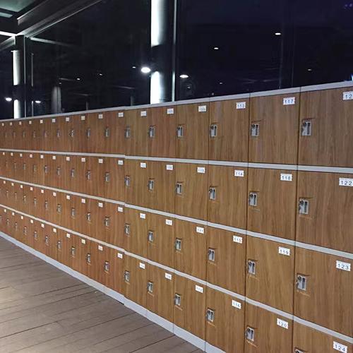 abs-plastic-locker-t-382s-four-tiers-flexible-configurations-wood.jpg