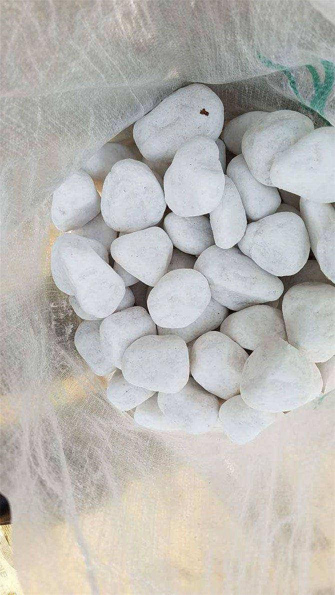 Snow White Pebbles Wholesaler Honed Custom For Wall