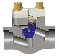 螺栓固定盖式活塞止回阀,ASTM A105N,800级,1英寸