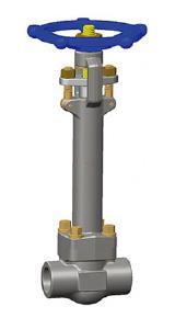 对接焊接低温闸阀,延伸的F304L主体,CL1500,1英寸