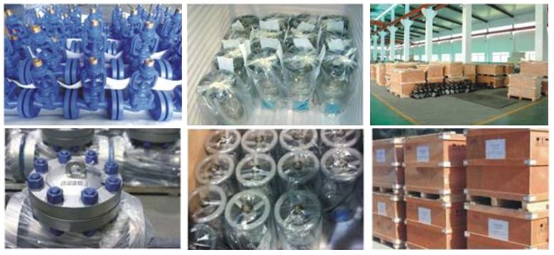 Weldon valves packing