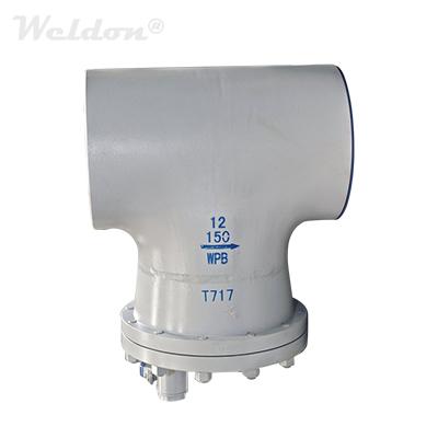 ASTM A234 WPB T Strainer, BB Design, DIN 3356, 12 Inch, 150 LB, RF