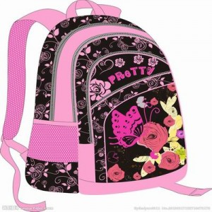 The Principle of Backpack